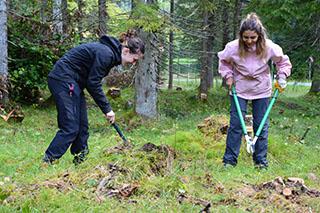 Praktizierte Landschaftspflege.