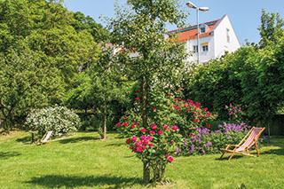 Blühendes Kleinod: der Rosengarten in Trostberg